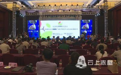 2019长江猕猴桃产业峰会暨长江国际猕猴桃技术论坛在赤壁市成功举行
