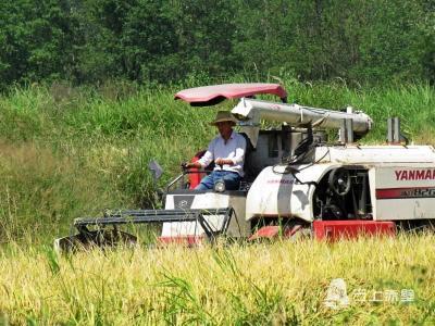 向农业现代化迈进 ——亲历者说赤壁70年农业变化