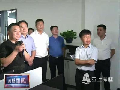 咸宁市省十三届人大代表专题调研赤壁市支持民营企业发展工作