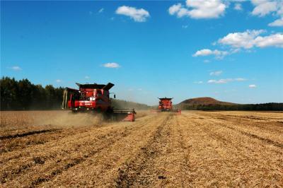 农业农村部:今年粮食有望再获丰收