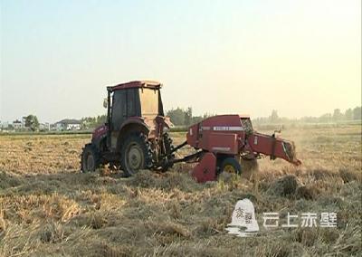 赤壁:助力稻田秸秆回收 解决农民秋播难题