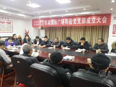 赤壁市首个商圈党支部——西湖国际党支部成立