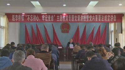 市领导到赵李桥镇开展主题教育活动