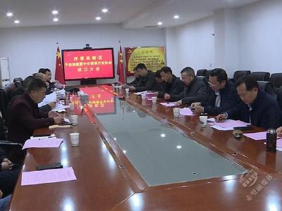 赤壁高新区平安创建暨中伙铺镇平安协会成立大会召开