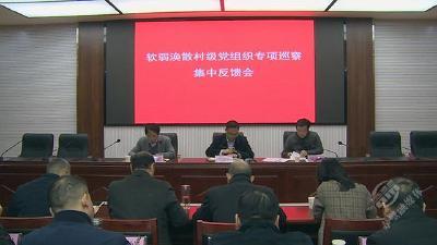 赤壁市召开软弱涣散村级党组织专项巡察集中反馈会