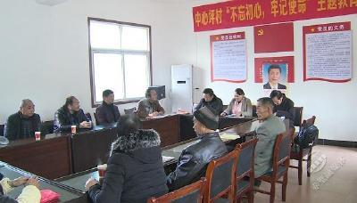 市领导到茶庵岭镇中心坪村参加主题党日活动