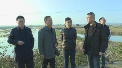 市领导调研沧湖开发区河湖库长制工作落实情况
