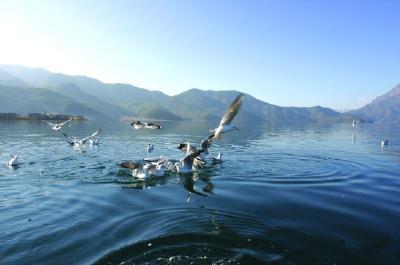湖北力争优良天数75%以上 基本消除劣Ⅴ类水体