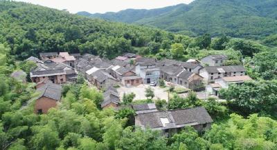 全国首批!赤壁市官塘驿镇张司边村入选第一批国家森林乡村