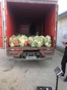 【一线写实】市供销社主动作为 做好蔬菜供应保障