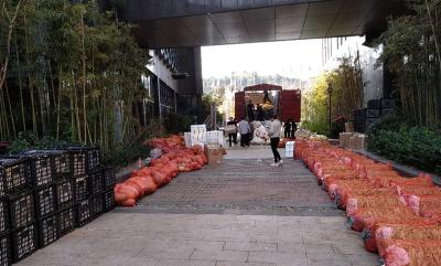 【一线写实】千里送蔬菜 情暖医护心 云南老乡为援赤医疗队送来家乡味道