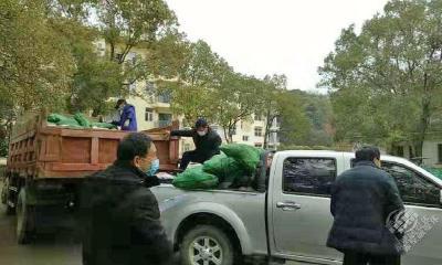 【一线写实】柳山湖镇:民生保障是联防联控的坚强动力