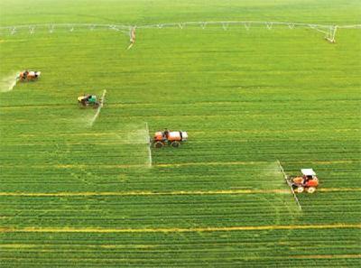 农业农村部:夏粮长势较好 春播进展顺利