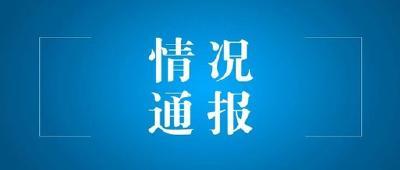 """赤壁市开展春季""""除四害""""工作情况通报"""