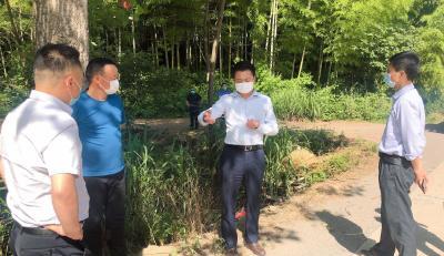 刘子恒调研农村人居环境提升工作