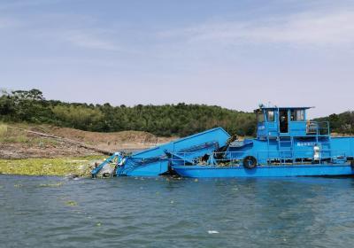 陆水湖风景区管委会多措并举加强陆水湖清漂保洁  确保饮用水安全
