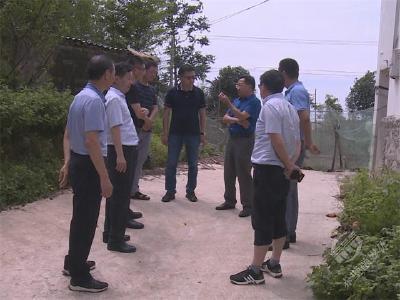 省农业农村厅来赤壁市调研农业产业发展工作