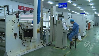 武汉高正新材料科技有限公司:提前谋划稳增长 政企合力渡难关