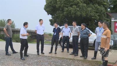 董方平巡查长江干堤防汛工作