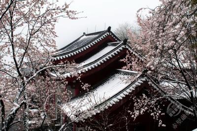 美文 | 雪后访葛仙寺