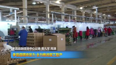直通县市区 孝昌县精准发力 全力推进复工复产