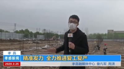 孝昌县精准发力 全力推进复工复产