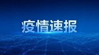 2020年3月26日湖北省新冠肺炎疫情情况