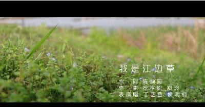 创作故事 |抗疫公益歌曲《我是江边草》——写在武汉解封时