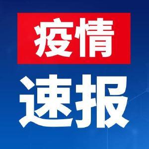 2020年3月31日湖北新增1例(武汉1例,为境外输入)