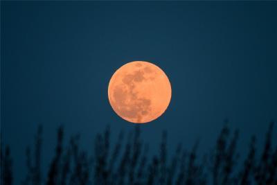 """期待!今年最后一次""""超级月亮""""将于7日现身天宇"""
