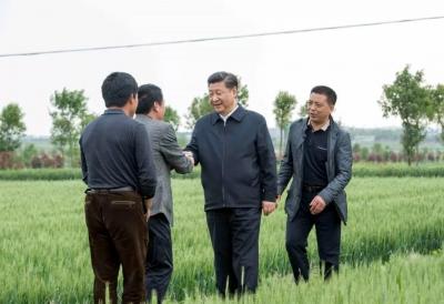 """习近平:""""我是黄土地的儿子"""""""