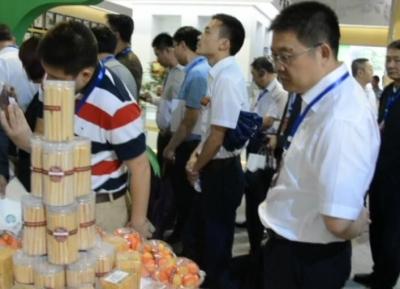 我市代表团参加第三届世界硒都(恩施)硒产品博览交易会开幕式