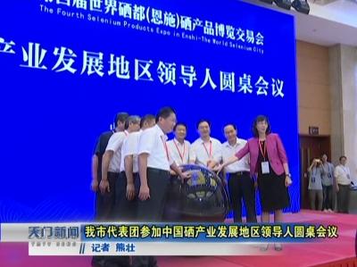 视频丨我市代表团参加中国硒产业发展地区领导人圆桌会议