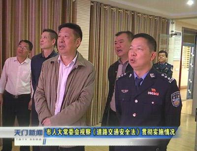视频丨市人大常委会视察《道路交通安全法》贯彻实施情况