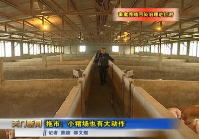 视频丨拖市:小猪场也有大动作