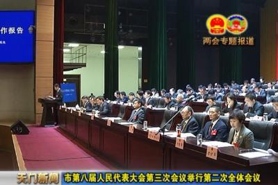 视频丨市第八届人民代表大会第三次会议举行第二次全体会议