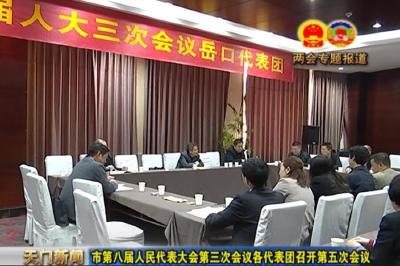 视频丨市第八届人民代表大会第三次会议各代表团召开第五次会议