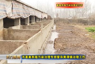 视频丨 畜禽养殖污染治理进行时  市畜禽养殖污染治理专班督导黄潭镇治理工作