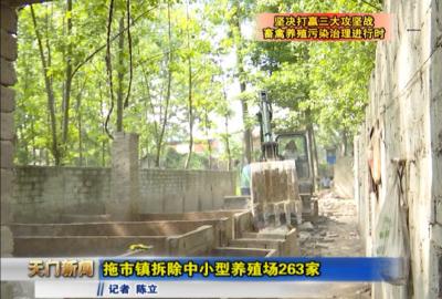 视频丨坚决打赢三大攻坚战•畜禽养殖污染治理进行时 拖市镇拆除中小型养殖场263家
