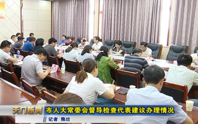 视频丨 市人大常委会督导检查代表建议办理情况