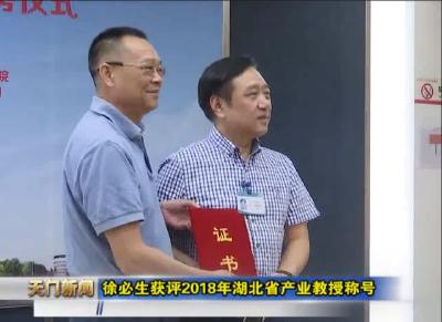 视频丨徐必生获评2018年湖北省产业教授称号