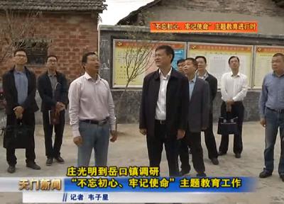 """视频丨庄光明到岳口镇调研""""不忘初心、牢记使命""""主题教育工作"""