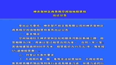 林区商务局空闲场地租赁权出让公告.mpg