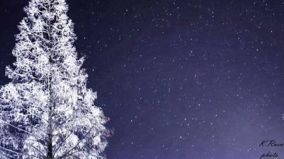 林区公安局采取有效措施保障雪天道路交通安全