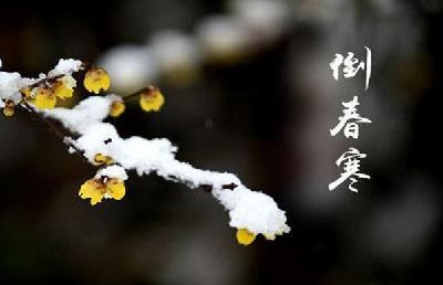 """""""倒春寒""""来临 林区气温将下降10到12℃"""