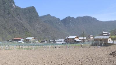 记者走基层|宋洛乡盘龙村:发展乡村旅游 助推乡村振兴