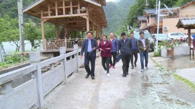 林区政协到新华镇调研农村人居环境整治工作