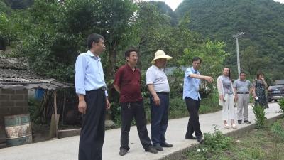 林区农业农村局为红坪镇板仓村乡村振兴、美丽乡村建设提建议