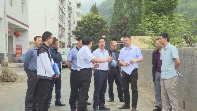 刘启俊:把阳日镇打造成高水平的特色小镇