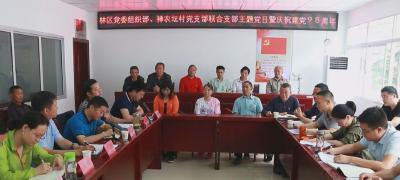 林区党委组织部机关支部在帮扶村开展支部主题党日活动